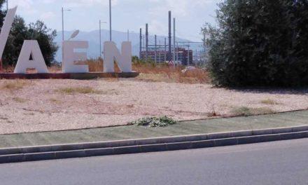 El Ayuntamiento iniciará un plan de adecuación de las principales rotondas de Jaén
