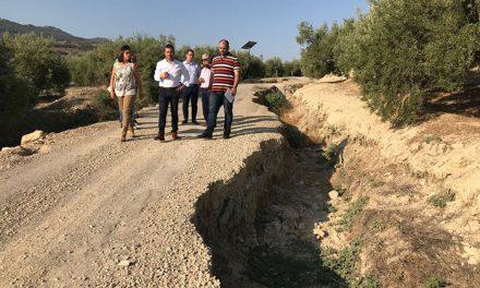 El alcalde visita el camino agrícola de Los Coches para valorar soluciones a corto y medio plazo para los propietarios de fincas