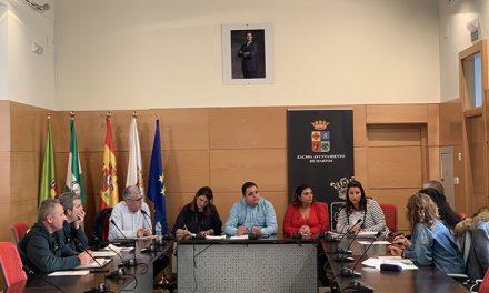 La Comisión de Seguimiento contra la Violencia de Género constata un aumento de las denuncias en el segundo semestre del año pasado