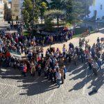 Centenares de personas se concentran en defensa del olivar tradicional y del aceite de oliva