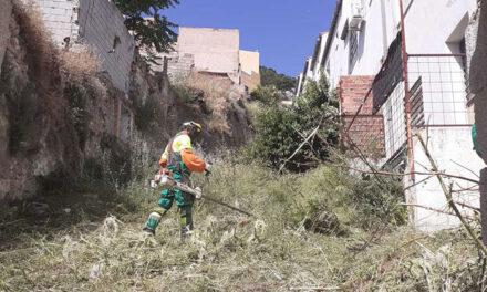 Intenso trabajo de desbroce y limpieza en 71 parcelas de la capital