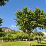 El alcalde propondrá una zona verde de Las Fuentezuelas como emplazamiento para el monumento de homenaje a los trabajadores de servicios esenciales durante la crisis sanitaria