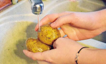 Cuidados con los alimentos en tiempos del COVID-19