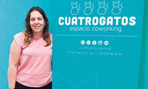 Cuatro Gatos espacio coworking: Tu aliado para una aventura empresarial sin ataduras ni altos costes
