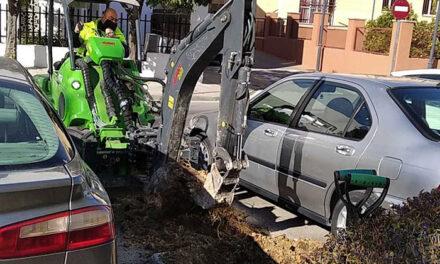El Ayuntamiento de Jaén prosigue con los trabajos de recuperación de zonas verdes con la plantación y reposición de 280 árboles en una treintena de calles