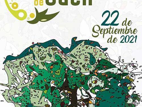 El jurado elige al Consejo Oleícola Internacional como ganador del I Galardón Internacional Ciudad de Jaén al conocimiento de la Olivicultura promovido por el Ayuntamiento de Jaén